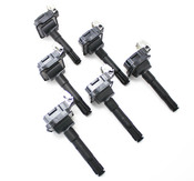 Audi VW Ignition Coil Set of 6 - Beru 058905105