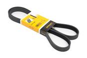 BMW Accessory Drive Belt - Contitech 6PK1548